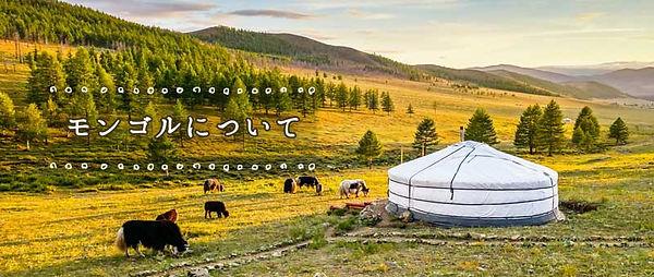 モンゴルについて