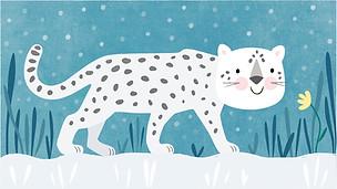 Mr Snow Leopard
