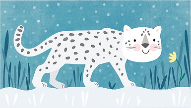Mr Snow Leopard