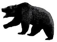 mercato orso ribassista