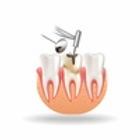 Root Canal Specialists on toothfind