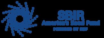 SBIR+-+Americas+Seed+Fund.png