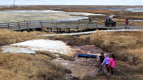 Sunken land under boardwalk23.jpg
