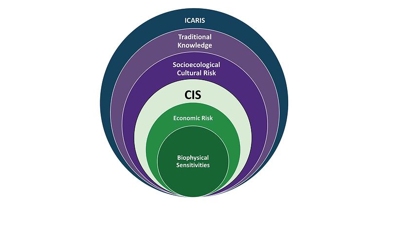 ICARIS - Venn Diagram Again (002).png