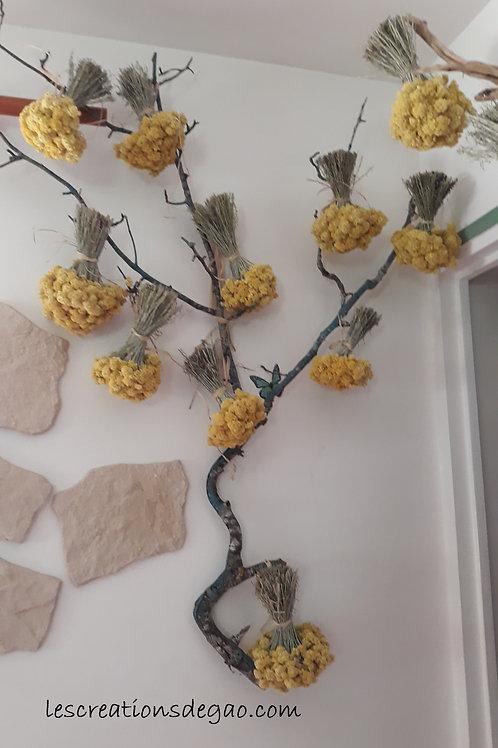 Bouquets d'Immortelle