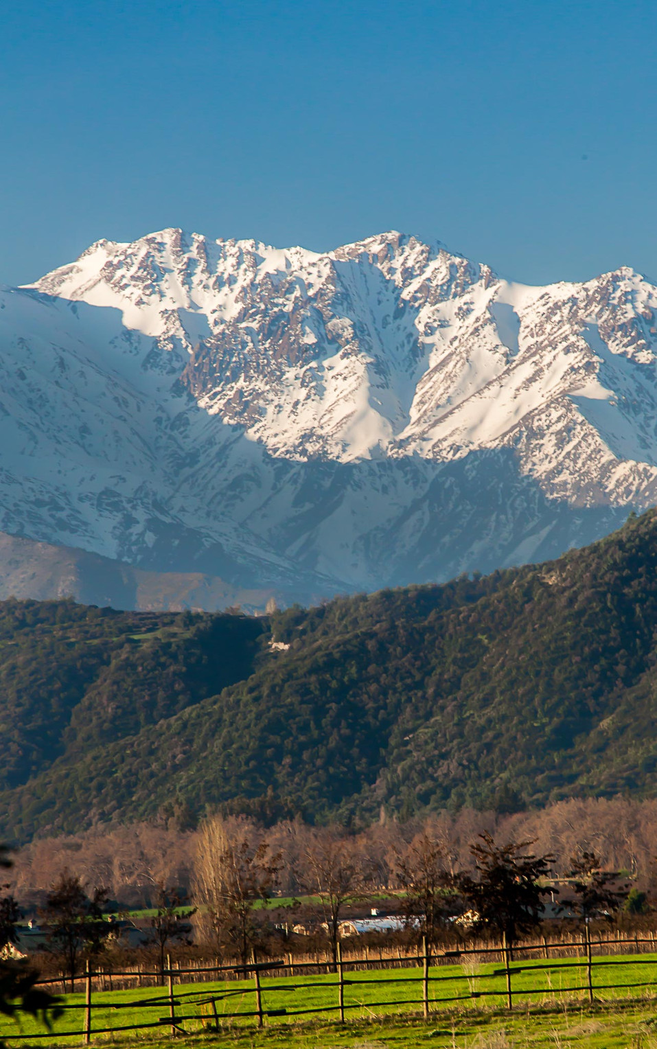 Chile (88).jpg