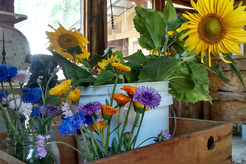 Local Edible Flower Subscription