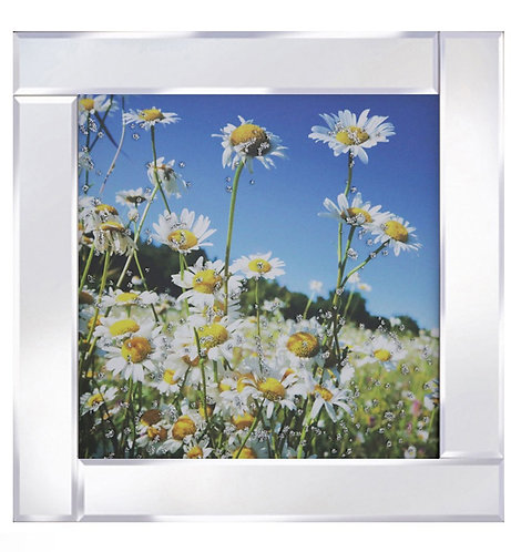 Daisies on Mirrored Frame