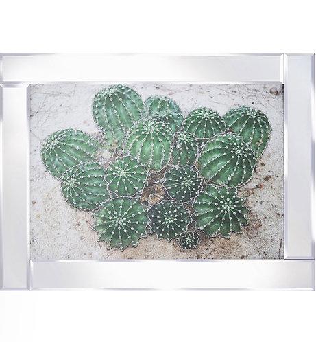 Cacti on Mirrored Frame 95x75cm