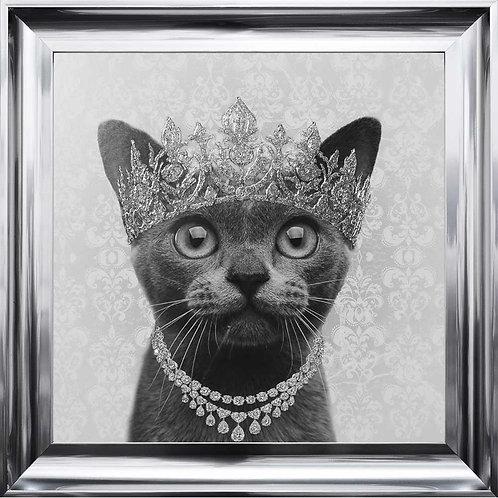 Burmese Cat with Crown Chrome Scoop Frame 75x75cm