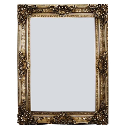Antique Champagne French Style Mirror 120x90cm