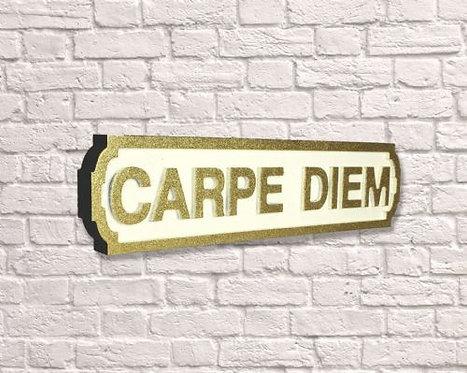 Carpe Diem Road Sign