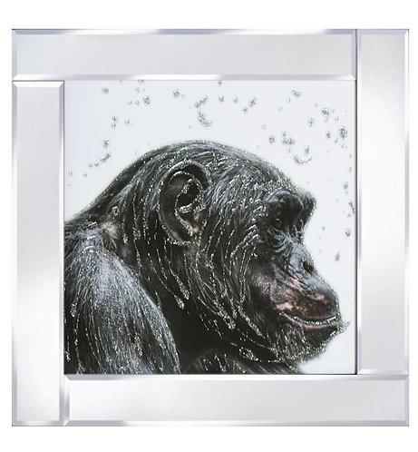 Ape on Mirrored Frame