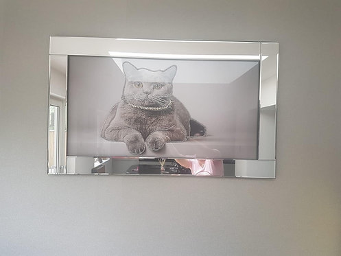 Cat with Necklace on Mirrored Frame 100x60cm