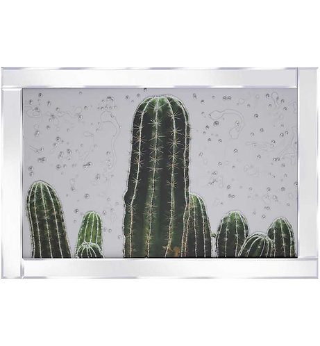 Cacti on Mirrored Frame