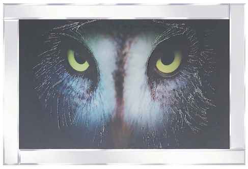 Great Grey Owl on Mirrored Frame