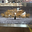 Thumbnail: Champagne Cherry Tree on Mirrored Frame 110x60cm