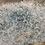 Thumbnail: Blue Blossom Tree 115x75