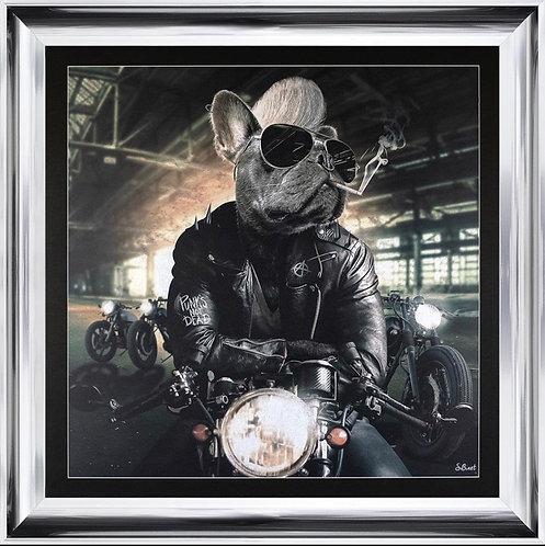 Motorbike Frenchie on Chrome Scoop Frame 90x90cm