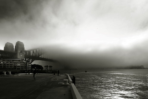 Beneath the Sydney Fog (18' x 30') - 3 PRINTS