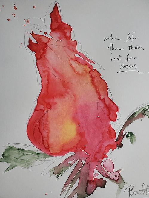 Rose Hunter LIMITED EDITION PRINT