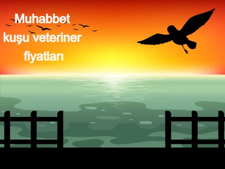 Muhabbet kuşu veteriner fiyatları