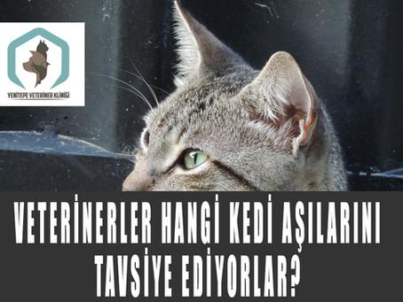 Veterinerler Hangi Kedi Aşılarını Tavsiye Ediyorlar?