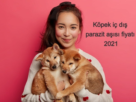 Köpek iç dış parazit aşısı fiyatı 2021