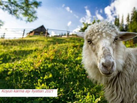 Koyun karma aşı fiyatları