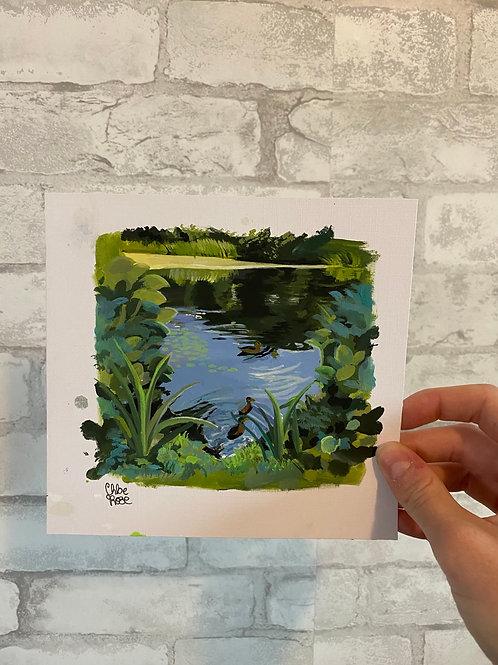 Duck pond (ORIGINAL)