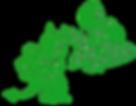 Sereia CafeRestaurnt logo Green.png