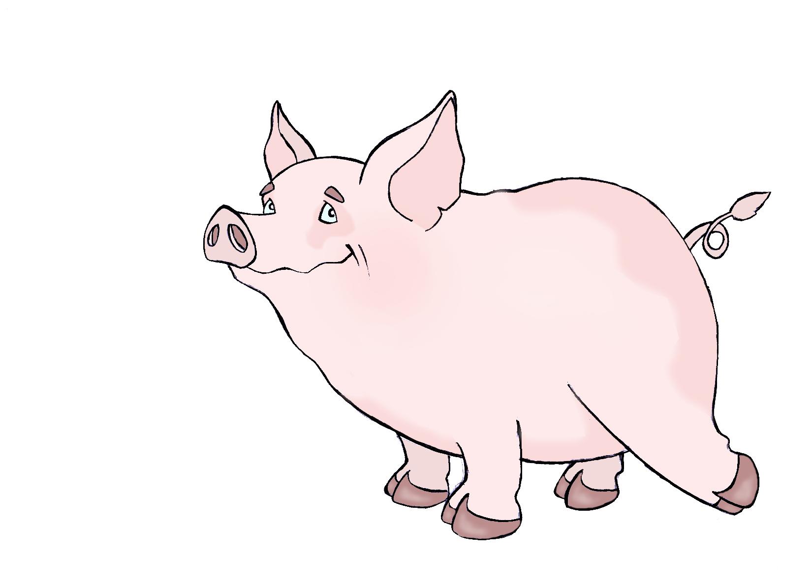 cerdo color.jpg