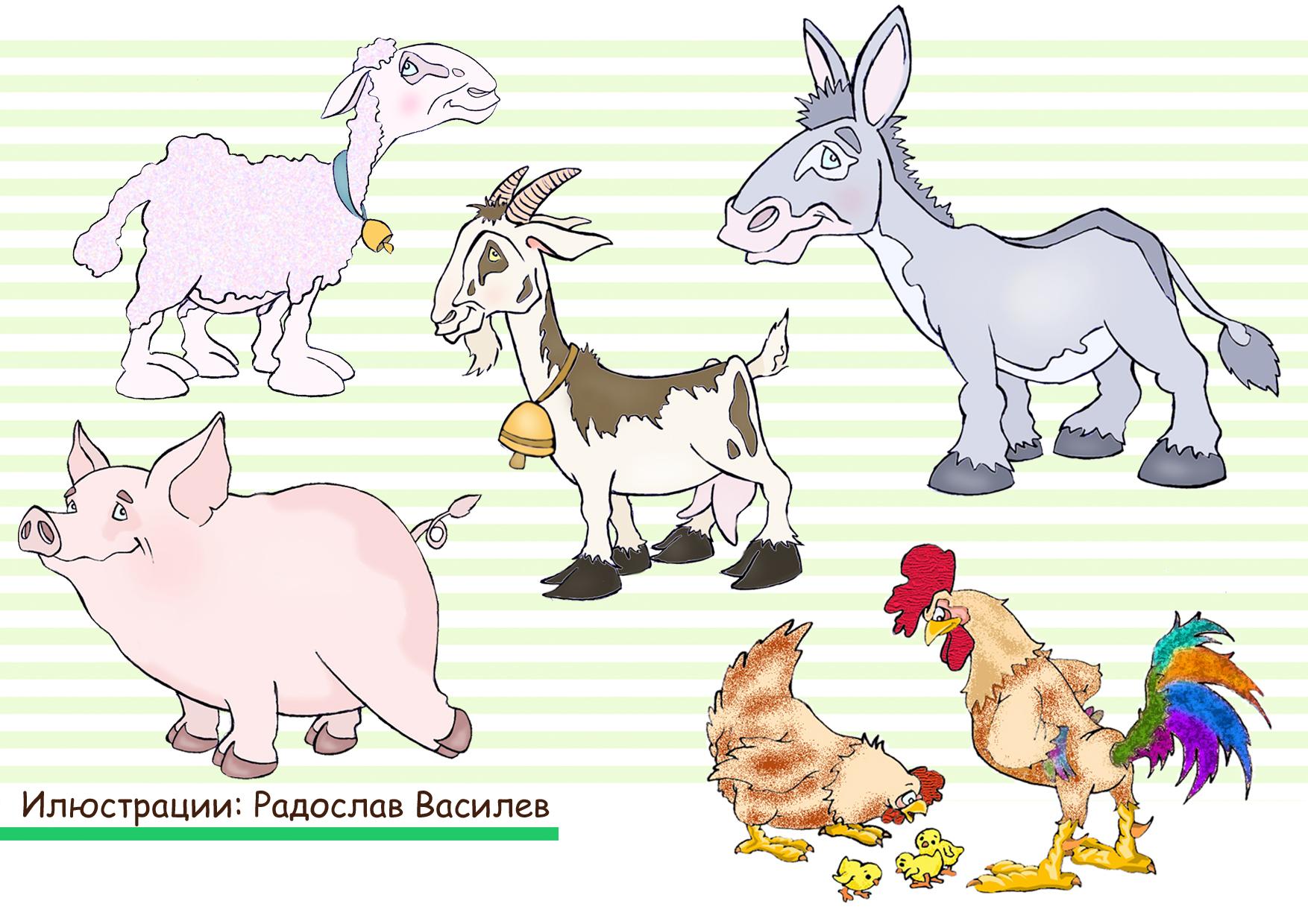 animales color.jpg