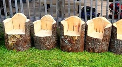 Furniture Wooden Chairs