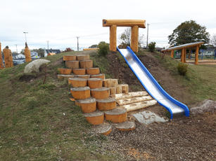 Hill Slide with Steppers