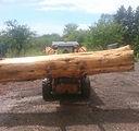 Materials large wood log.jpg