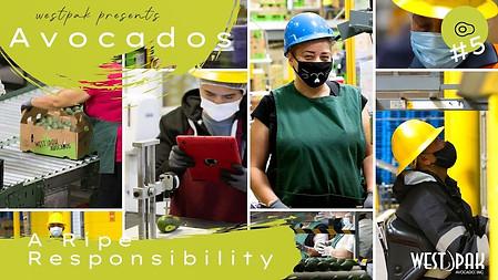 Avocados - A Ripe Responsibility