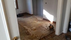 Floor Demo