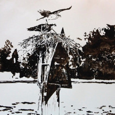 Osprey On The Severn-Contemporary Art
