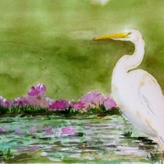 No Regret Egret-Coastal Contemporary Art Painting