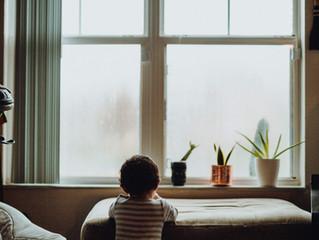 Window + Aiden