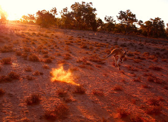 Australia is the land of droughts and floods, but they are becoming more frequent and forceful. The