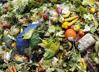 Help the environment, reduce food waste