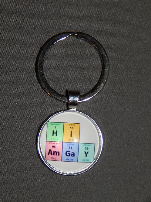 Hi I Am Gay Glass Domed Keyring