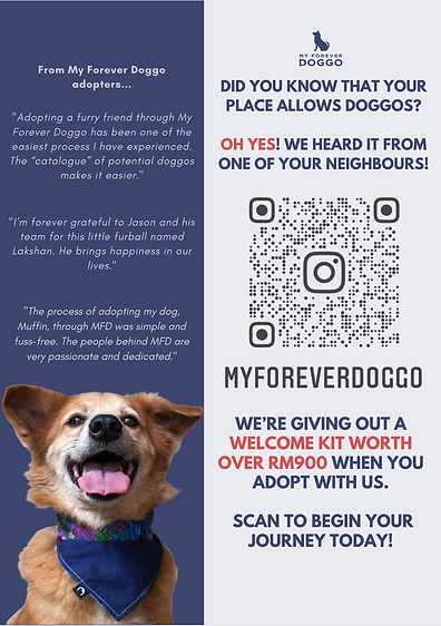 Copy of MFD flyers.png