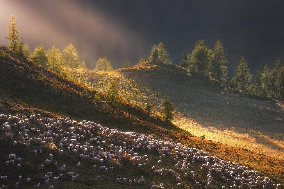 massimo coizzi fotografia di paesaggio - workshop dolomiti - tre cime - cinque torri - jpg