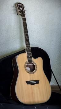 Акустическая гитара Washburn WD10SCE 2012