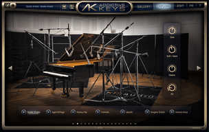 Plugin IK Multimedia TRacks 5