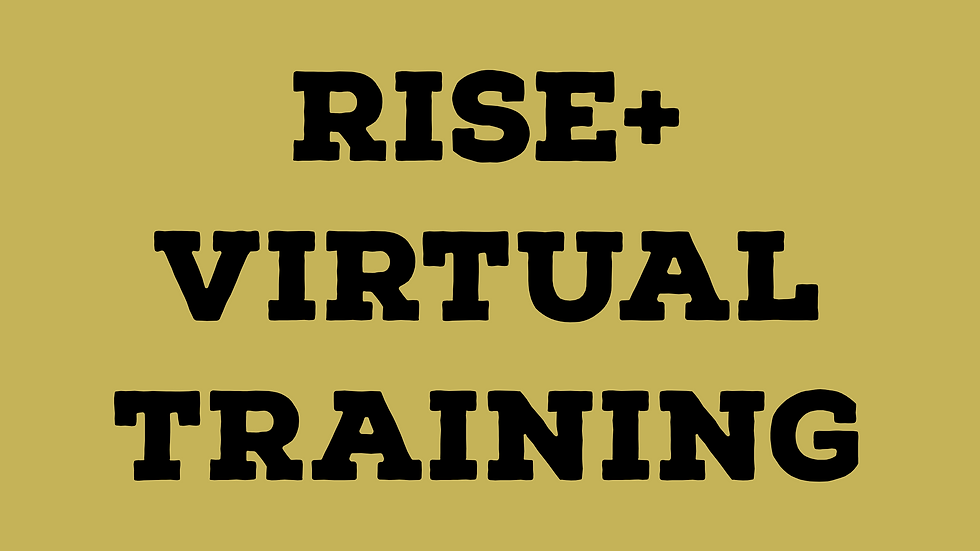 RISE+ Virtual Training
