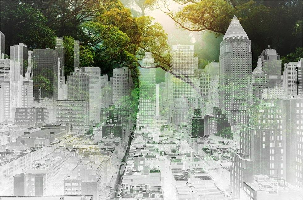 green city-min.jpg